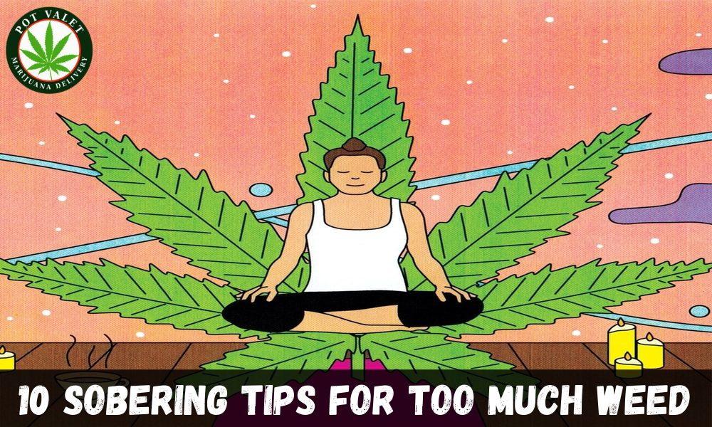Favinks / 10 Sobering Tips for Too Much Weed